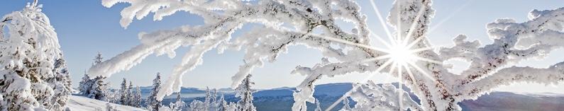 vinter friluftsdag 1